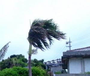 Okinawa(543)